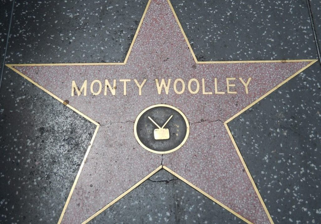The Hollywood Walk of Fame is 18 wonderful blocks of terrazzo underfoot.